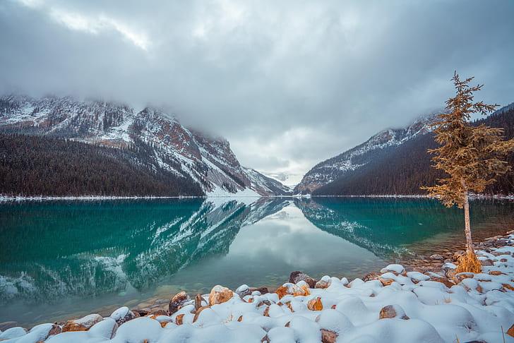 lakes-lake-louise-winter-hd-wallpaper-preview